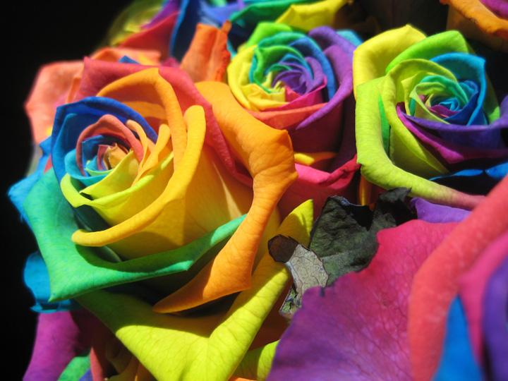 Bleeding the Colors of Life - Original Poem (2/3)